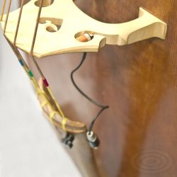 Schertler Stat Double Bass Pickups for sale at Bridgewood and Neitzert London