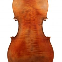 Cello by Paul Michael Stanton 2016 for sale at Bridgewood and Neitzert London
