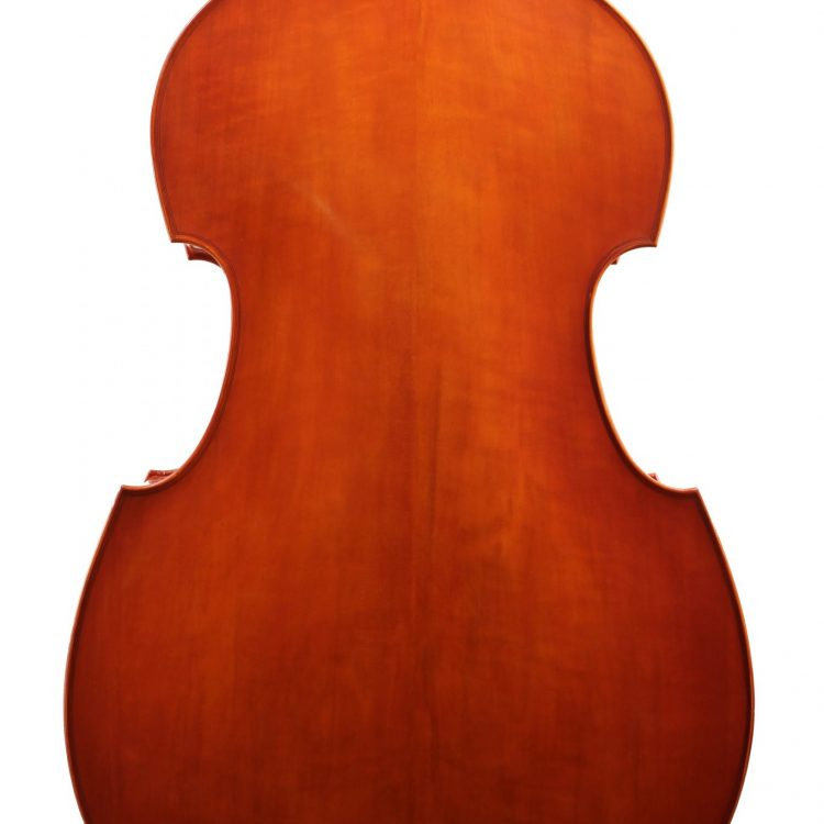Westbury double bass for sale at Bridgewood and Neitzert London