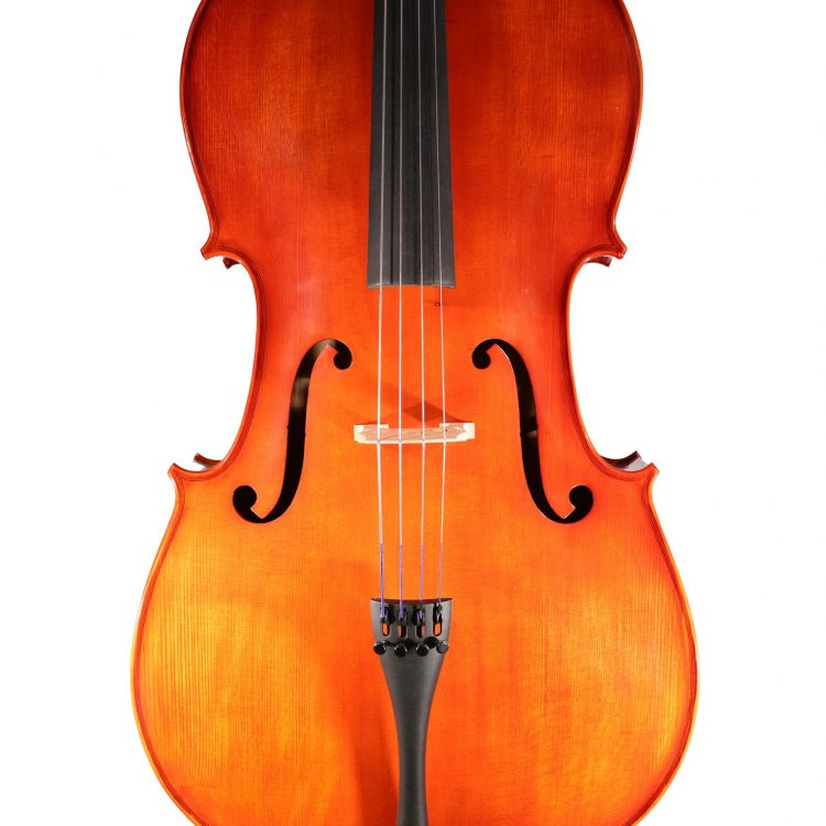 Hidersine Cello Piacenza Outfit 4/4 for sale at Bridgewood and Neitzert London