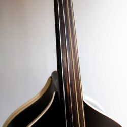 ONE4FIVE Double Bass by Blast Cult