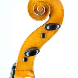 Old English cello school of Peter Wamsley