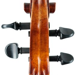 French cello from the workshops of Thibouville-Lamy c.1890
