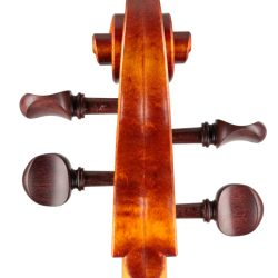 cello by Andrew Woods 2020